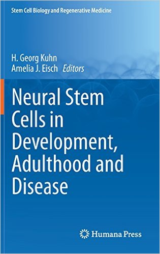 Neural stem cells in development, adulthood, and disease
