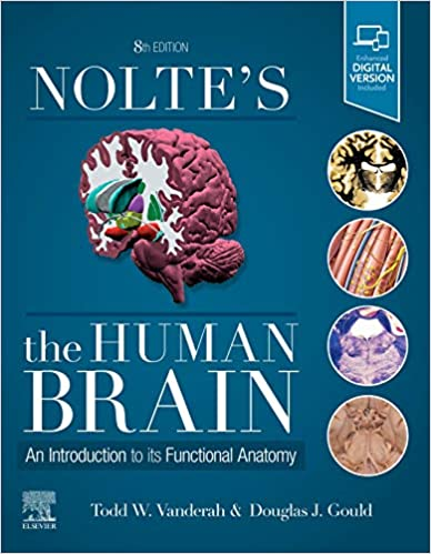 Nolte's The human brain : an introduction to its functional anatomy